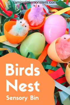 Enjoy the coming of Spring with these baby birds in a colorful nest sensory bin. Hatching the eggs and weaving the paper nest is a fantastic fine motor activity for toddlers and preschoolers. Sensory Activities Toddlers, Sensory Bags, Easter Activities, Spring Activities, Motor Activities, Sensory Play, Toddler Preschool, Preschool Activities, Play Based Learning