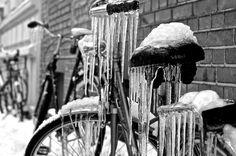 Frozen B-Icicle, Münster Germany - #Münster| gila, ini anti mainstream buat para bikers. Kalau di bawa ke Indonesia udah cair deh...