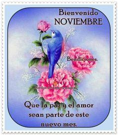 Bienvenido Noviembre. Que la paz y el amor sean parte de este nuevo mes
