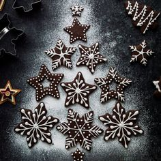 Chocolate gingerbread cookies- a chocolatey twist on classic gingerbread; they make great cut-outs for Christmas! Vegan option.