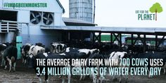 Milk Life? How About Milk Destruction: The Shocking Truth About the Dairy Industry and the Environment