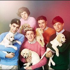 One Direction with puppies!! Awwwww!