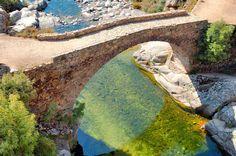 Pont Génois de la forêt d'Aîtone (Corse) | MON PORTFOLIO
