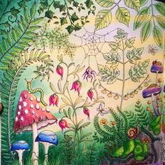 Take a peek at this great artwork on Johanna Basford's Colouring Gallery! Forest Coloring Pages, Coloring Book Art, Adult Coloring, Enchanted Forest Book, Enchanted Forest Coloring Book, Forest Drawing, Forest Art, Johanna Basford Secret Garden, Johanna Basford Coloring Book
