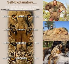No one likes to see it or think about it but soon it will be too late. #BanTrophyHunting
