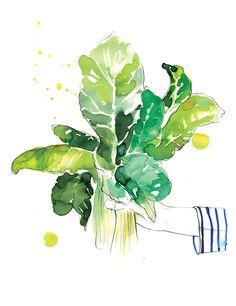 Sarah Hankinson - The Illustration Room 2016 Calendar, Light In The Dark, Plant Leaves, Herbs, Watercolor, Illustration, Artwork, Artist, Plants