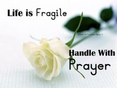 Life Is Fragile - we learned this at bscc the other day. I especially liked this one!