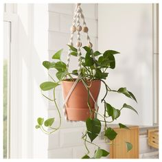 IKEA - ANVÄNDBAR, Hanging plant holder, Handmade by a skilled craftsperson.Keeping plants indoor gives better air quality at home, as plants add oxygen and moisture. Hanging Plants, Potted Plants, Indoor Plants, Ikea Plants, Porch Plants, Tomato Plants, Shade Plants, Diy Hanging, Ceiling Materials