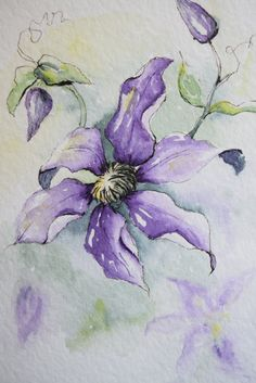 "Purple Climbing Clematis!  Prints only--This is a print from the original hand-painted watercolor greeting card on 140 lbs. acid free, Strathmore watercolor paper. All the cards are designed and painted by me. Dimension of the card is 5""x 6⅞ "". Matching envelope included. Prints are printed on strathmore watercolor paper.  This card can also easily fit into any frame that fits 5 by 7 paintings, as seen in the fourth picture. (Third picture shows that envelope is included. The third pictures…"