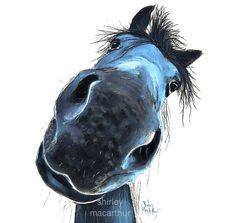 Shirley MacArthur Originals and Prints Cute Horses, Beautiful Horses, Horse Face Drawing, Caricature, Sea Turtle Painting, Horse Wall Art, Watercolor Horse, Blue Horse, Horse Print