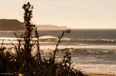 Un spot poco conocido al sur de Chile #surfing #wave #surfphoto