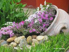 DIY spilling flower pot sounds nice, it will spill some joy into your garden! For this, spilled flower pot is a gorgeous idea. Landscaping Around Trees, Mulch Landscaping, Front Yard Landscaping, Succulents Garden, Garden Pots, Small Tropical Gardens, Garden Landscape Design, Back Gardens, Garden Projects