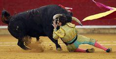 El torero Padilla sufre una cogida en la plaza de Zaragoza