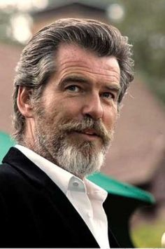 Pierce Brosnan, Handsome, with Grey Beard and Hair. Older Mens Hairstyles, Modern Hairstyles, Curly Hairstyles, Japanese Hairstyles, Wedding Hairstyles, Pierce Brosnan, Celebridades Fashion, Hair And Beard Styles, Hair Styles