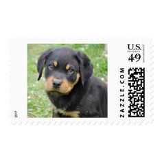 Rottweiler Puppy Postage - fun gifts funny diy customize personal