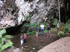 10 Amazing Natural South America Tourist Attractions  #7: Cueva del Guacharo, Venezuela