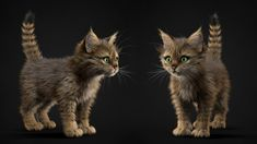 Kittens, Alina Makarenko on ArtStation at https://www.artstation.com/artwork/kittens