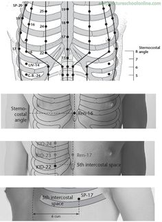 ST-18 Breast Root RUGEN - Acupuncture Points -2