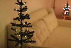 Lighting Up Tiny Trees! Tiny Christmas Trees, Christmas Lights, Battery Operated Lights, How To Introduce Yourself, Light Up, Sparkle, Shapes, Christmas Fairy Lights, Battery Operated Lamps