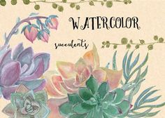 Watercolor succulent collection by ramika on @creativemarket