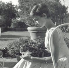 Audrey Hepburn with a feline friend.