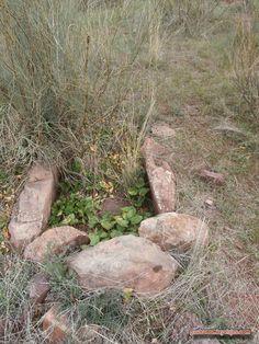 Tumbas de la Era del Paleolítico (Unos 6.000 años)