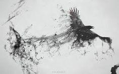 Risultati immagini per crows