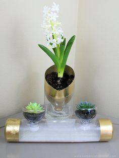 These metro modern self watering planters will catch everyone's eye. They're low maintenance plant care disguised in classy uniquely upcycled soda bottles. Plastic Bottle Planter, Reuse Plastic Bottles, Plastic Waste, Diy Planters Outdoor, Hanging Planters, Recycled Planters, Recycled Garden, Diy Self Watering Planter, Watering Plants