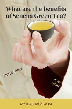 Sencha Tea, Sencha Green Tea, Iced Tea Recipes, Tea Benefits, Drinking Tea, Healthy Drinks, Herbalism, Herbal Teas, Meet