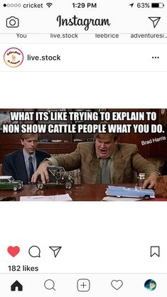 Dairy cows quotes horses 70 New Ideas Cow Quotes, Animal Quotes, Farm Quotes, Life Quotes, Funny Animal Memes, Funny Animal Pictures, Hilarious Quotes, Animal Humor, Funny Memes