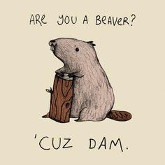 Funny pick-up line t-shirt. Are you a beaver? 'Cuz Dam. Get the Tee: http://www.feistees.com/are-you-a-beaver-t-shirt/