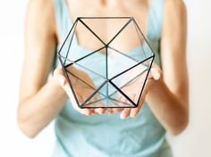 Meet Icosahedron! A handcrafted glass terrarium featuring one of the most charming Platonic solids in geometry. This geometric planter is handcrafted from 2