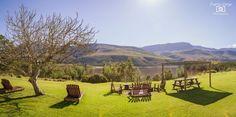 Hardegat Vineyard, The Outsiders, Outdoor, Outdoors, Vine Yard, Vineyard Vines, Outdoor Living, Garden