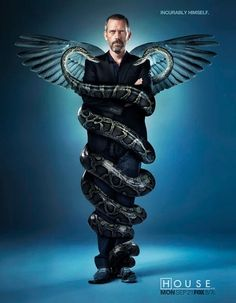 Dr. House - Calculating, intelligent, observant, quick, independent, problem solver.  Played by Hugh Laurie