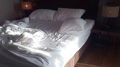 Trong phòng khách sạn Malibu Vungtau có gì??? Bed, Home, Stream Bed, House, Ad Home, Homes, Beds, Haus