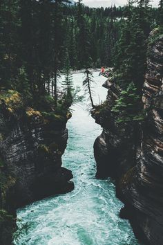 Athabasca Falls by Hannes Becker