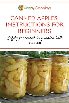 Picked Lots Of Apples? Take a stab at Canning Apples In Slices - An Easy Canning Project To Preserve Your Apples Into The Winter. Get Instructions At Preserving Apples, Canning Apples, Easy Canning, Canning Vegetables, Canning Tips, Preserving Food, Canning Vegetable Soups, Pressure Canning Recipes, Amigurumi