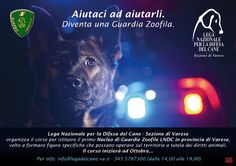 Ottobre 2015 Corso per #GuardieZoofileVolontarie organizzato dalla @legadelcanev Info: info@legadelcane-va.it - 345.5787300