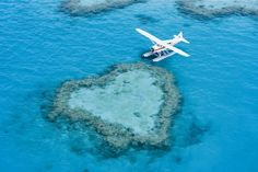 Heart Reef is a naturally made coral formation on the Outer Great Barrier Reef. Share a scenic flight from The Whitsundays over this gorgeous nature feature . Airlie Beach, Great Barrier Reef, Oh The Places You'll Go, Places To Visit, The Whitsundays, Queensland Australia, Australia Hotels, Coast Australia, Australia Travel