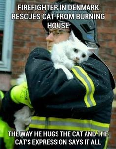 The Memes Factory  Firefighter in Denmark rescues cat from burning house