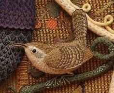 Birds of Beebe Woods   SALLEY MAVOR