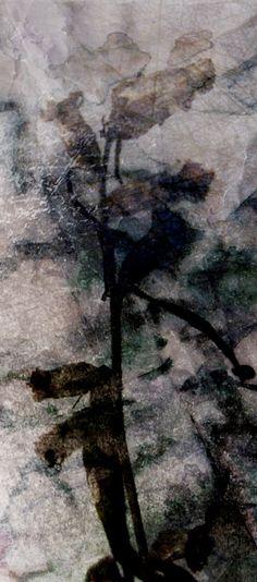 Päivi Hintsanen: From the Garden III, 2011