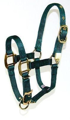 Other English Tack 3155: Hamilton 8Da Avdg 3/4-Inch Nylon Adjustable Arabian Horse Halter For 800 To 1... -> BUY IT NOW ONLY: $35.61 on eBay!
