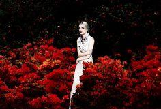 Erik Madigan Heck: novo olhar da fotografia de moda.  Mistura arte e moda com foco total na roupa.