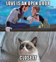 Monday Memes: Let It Go - My No-Guilt Life @geekgirl8 haha grumpy cat hates frozen!: