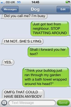 Texts from dog... I think I understand the dog now, It's a bulldog. Biscuits you little jerk!