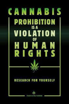 #Cannabis prohibition is a violation of human rights | Anonymous ART of Revolution