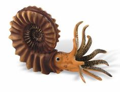 Large Ammonite Model