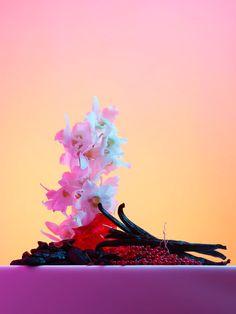 @Paullepreux - Personal Work - set design @Helene_Leverrier #stilllife #stilllifephotography #fragrance #wood #bluelight #perfume #ingredients #spring #flowers #color #personalworks #spring #frangrance