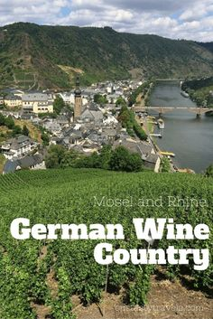 Learn about German wine and how to visit the popular Rhine and Mosel River regions. Ourtastytravels.com #alamoeurope